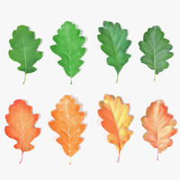 oak leaves 3d 3ds