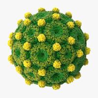 hepatitis b 3d model