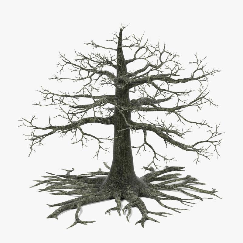 Old Oak(Dead).jpg