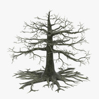 dead old oak tree 3d model