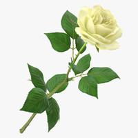 rose modeled leaf 3d obj