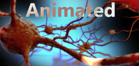 neuron animation 3d max