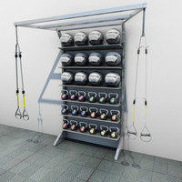T Rex Medicine Ball Kettle Ball Cabinet