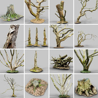 16 Realistic Trees Collection