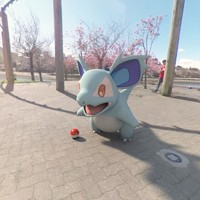 3d pokemon nidorina model