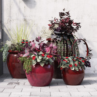 Red Potted Plants