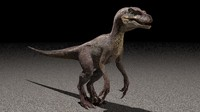 velociraptor 3d max