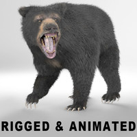 - rigged animation 3d model
