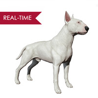 bull terrier real-time real time 3ds