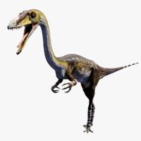 3d dinosaur coelophysis model