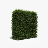 3d exterior boxwood hedge