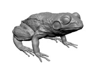frog sculpture 3d obj
