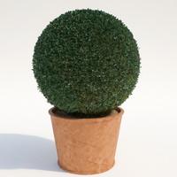 3d shrubs