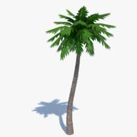 cartoon palm tree 3d model