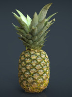 ananas 3d model