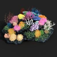 3d coral model