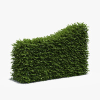 boxwood hedge transition 3d max