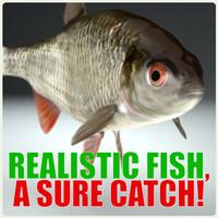 3d fish roach model