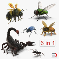 rigged insects 3d model