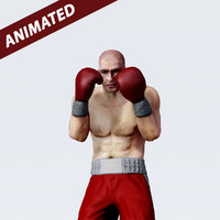 3d boxer animation motion