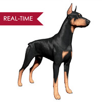 3d model doberman pinscher real-time real time