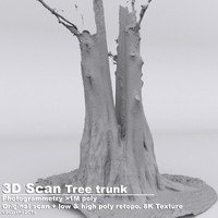 taxodium poplar tree trunks 3d obj