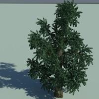 tree branch 3d max
