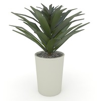 plant pot 3d 3ds