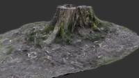 3d model tree stump scanned