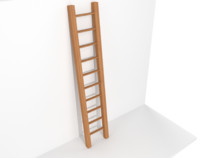 3ds ladder