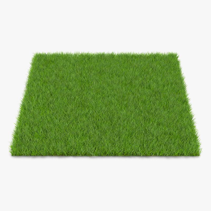 Fescue grass vray 3d model 00.jpg