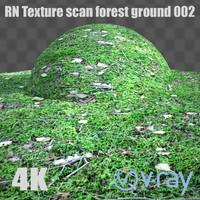 RNtexture scan: forest ground 002