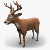 3d model deer v-ray animation