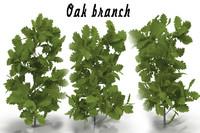 3d oak branch model