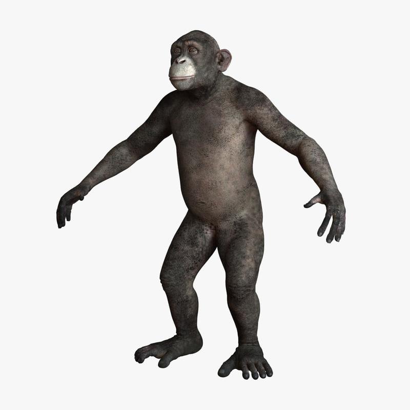 Chimpanzee_Texture_v001.0001.jpg