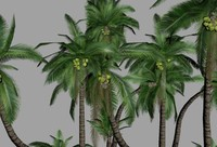 Palm Tree (Low Poly)