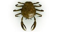 Crab Rigged