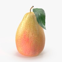 Pear 04