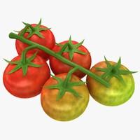 Cherry Tomatoes (Mix)
