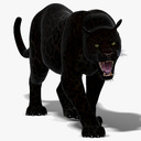 panther 3D models