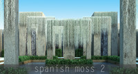 spanish moss 2