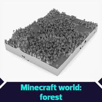 Minecraft world Forest