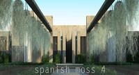 spanish moss 4