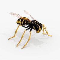 Realistic Wasp - Rigged