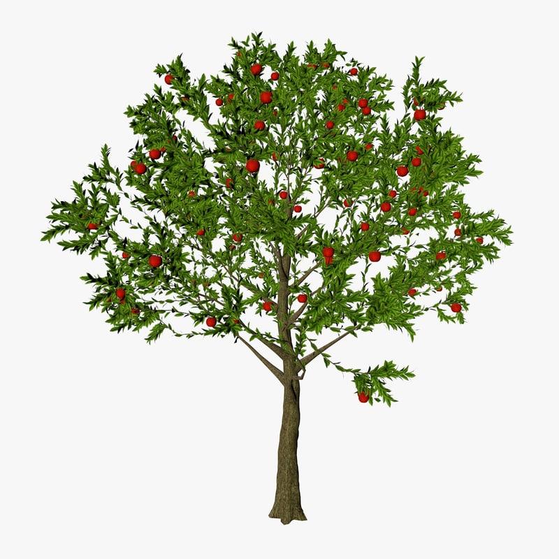 Apple_Tree_1200.jpg
