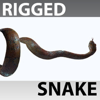 Snake Rigged