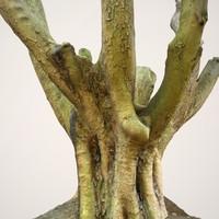 Realistic Tree Model 1