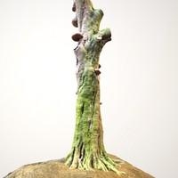 Realistic Tree Model 3