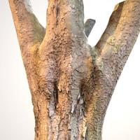 Realistic Tree Model 4