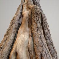 Realistic Tree Model 8